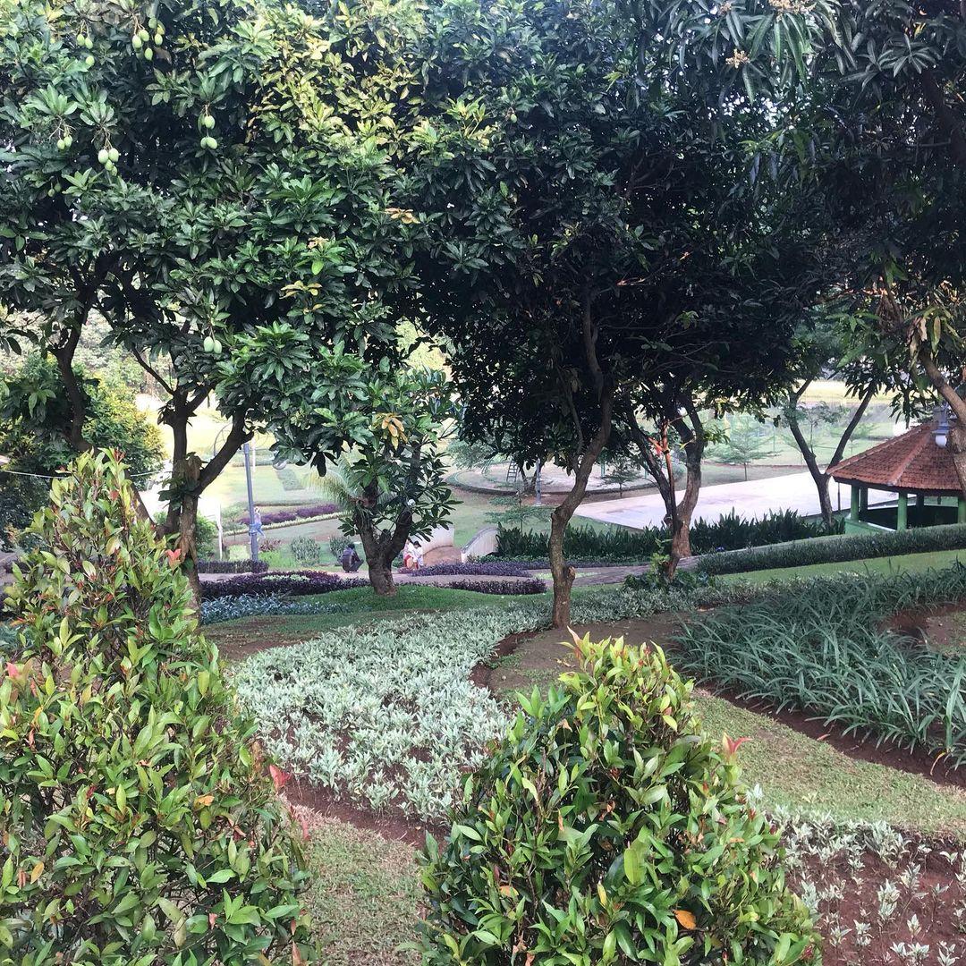 Taman Casuarina
