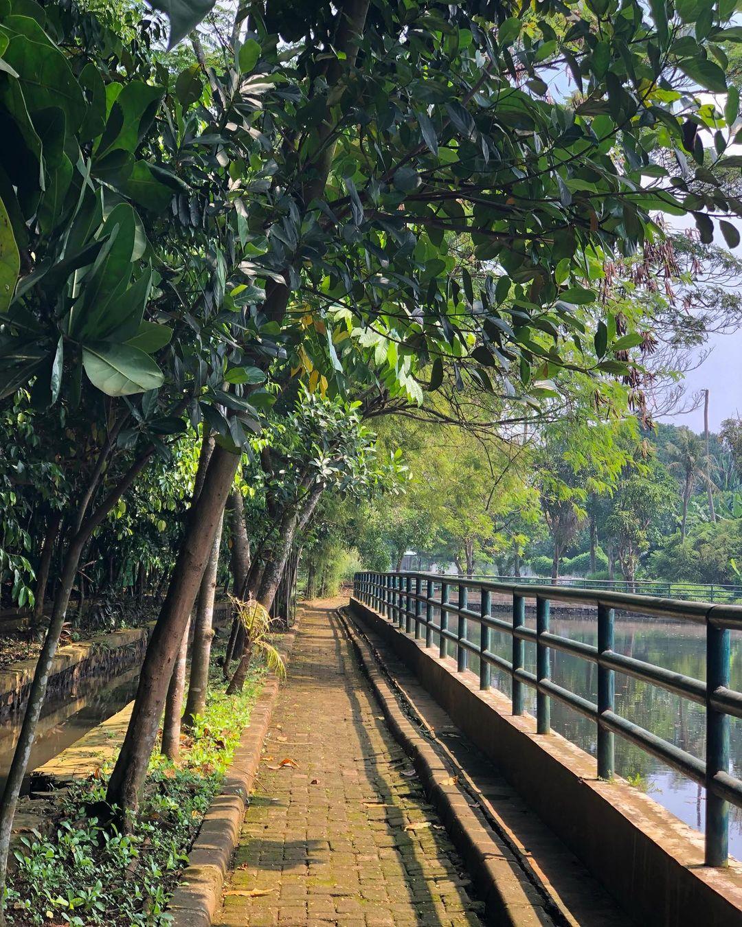 Hutan Kota Munjul